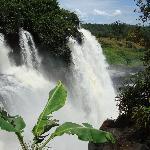 les chutes de boali 2008