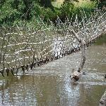 boali pont en liane