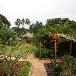 Balamaga garden