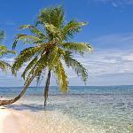 Diadup Island Snorkeling Trip