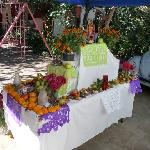 Family Day of the Dead Shrine (rear)