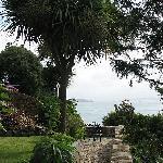 Part of lower garden