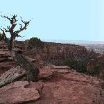 Overlook in Colorado National Monument