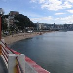 Oriental Bay Beach, from the Roof Terrace of Fishermans Table Restaurant.