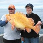 31 lb.Yelloweye Rockfish