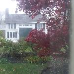 Wild Pigeon im Dachgeschoß dieses Cottages