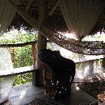 Photo de Haramara Retreat