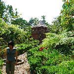 hastinapura area