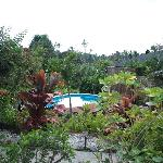 landscaped gardens and pool