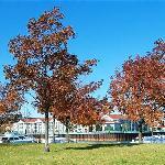 Fall at Radisson