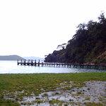 Ship Cove - Start of Track