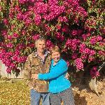 Hosts:  Chris & Helen Whyte