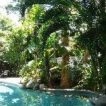 exotic lagoon pool