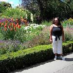 The Botanic Gardens Christchurch