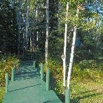 Boardwalk to the cabins