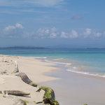 I colori a Bocas del Toro, Isla Zapatilla