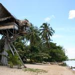 Treehouse on the Beach