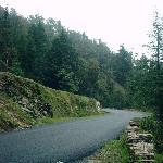 Road to Mukteshwar