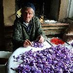 Agriturismo Il Vecchio Maneggio Foto