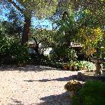 The Courtyard - El Presidio