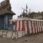 templ photo