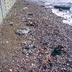 Playa sucia delante del hote, una lastima.