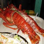 Another view of the Lobster