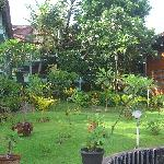 部屋の周囲には小さな庭があります。