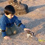 Children will have a fun time... near a Nandi Temple