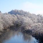 A walk along the river in Aberfoyle