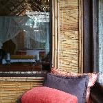 Tree suite interior