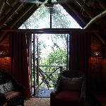 Tree suite bed room