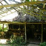 Lobby of Melinda's Garden