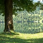 on the shores of lake Bohinj at Stara Fuzina