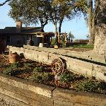 Old Farm Equipment entering tasting room