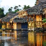 Foto di Mamiraua Sustainable Development Reserve