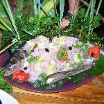 Avi the amazing chef and what he can do with fresh fish
