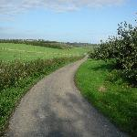 Countryside around the B&B