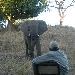 Photo of Thula Thula Exclusive Private Game Reserve and Safari Lodge
