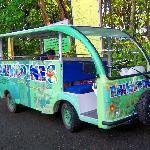 Environment Friendly Vehicle