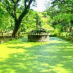 Neptune Pond