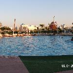 Large Pool ara in the evening
