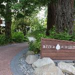River Birches Entrance