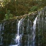横長、縦短の珍しい滝
