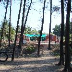 Resort from Suruchi Baag.