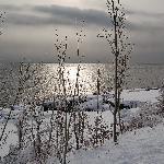 Northshore Splender