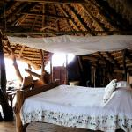 Luxury accommodations in Eco-lodge