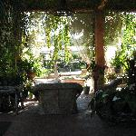 Lower Patio at the Plantation House
