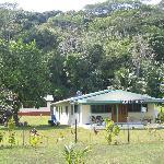 Amuri Guest House
