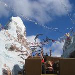 Yeti Breaks the Track at Expedition Everest